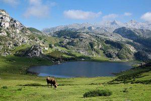 Lagos de Covadonga y comida asturiana