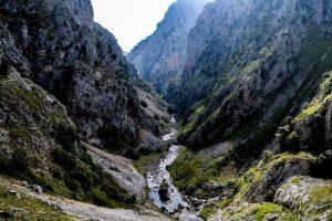 Comida asturiana: Paraíso gastronómico más allá del cachopo asturiano