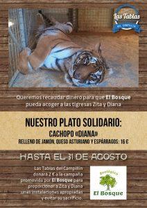 cachopo solidario zoologico