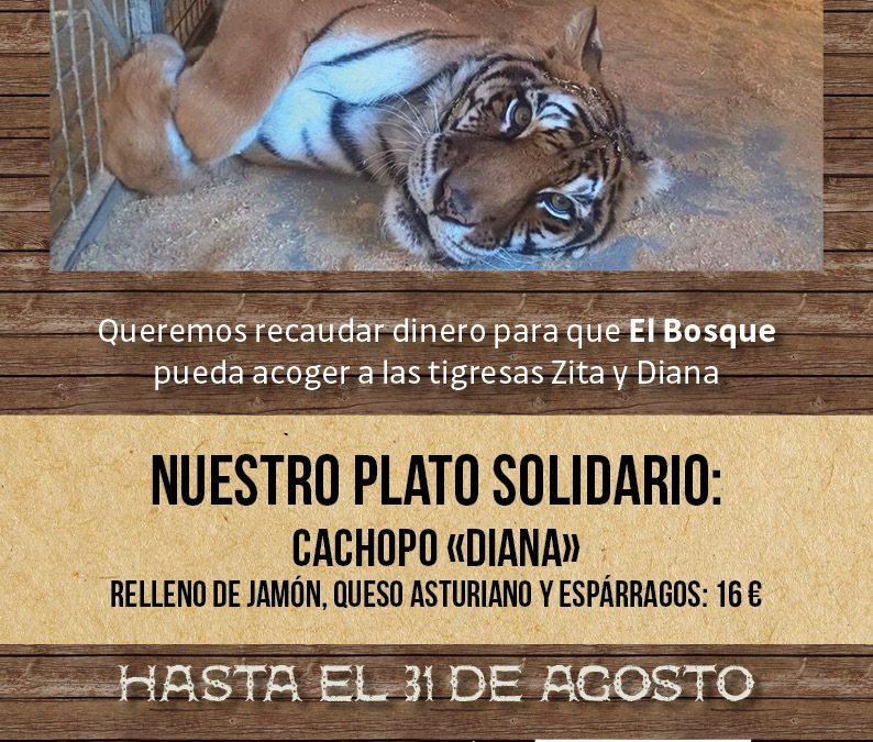 Ayudamos al Bosque Zoológico con nuestro cachopo solidario
